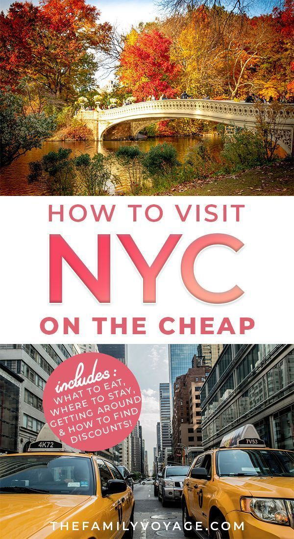planning a trip to new york on a budget the family