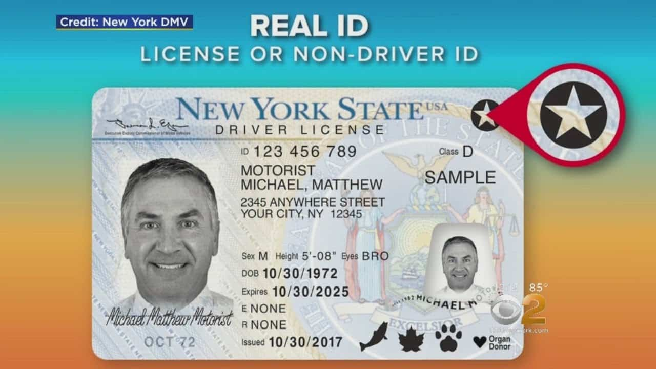 Real ID &  Long Lines at the DMV